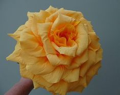 Beautiful handmade paper roses - individual and unique by PaperalchemyStudio Paper Roses, Etsy Seller, Create, Unique, Flowers, Plants, Handmade, Beautiful, Hand Made