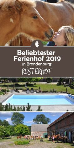 Beliebtester Ferienhof 2019 in Brandenburg ist der Rüsterhof! Best Picture For Travel Hacks for girls For Your Taste You are looking for something, and it is going to tell you exactly what you are loo Florida Travel, Asia Travel, Panama City Beach Florida, Destin Florida, Panama City Panama, Florida Beaches, Hotel Am Strand, Florida Pictures, Plus Populaire