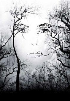 Pretty Cool- Natural Art / Illusion