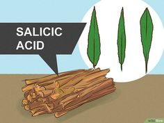 How to Make Aspirin if You're Lost in the Woods: 11 Steps