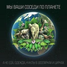#eco #vegan