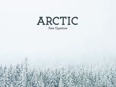 This is the FREE Arctic Typeface by Matt Ellis which is a cool font where the letters end at disctinct points. It's a strong font that can be used for any number of things.