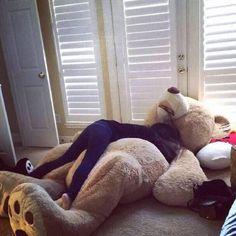 huge teddy bear tumblr - Pesquisa Google
