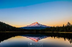 """Alpine Reflections"" Mt Hood Mt Hood National Forest  Mount Hood rises above the surrounding landscape at sunset as alpenglow sets in on the mountain reflecting in the still waters below.  Mt Hood is a spectacular place seeing it never gets old. When Alpenglow sets in at sunset and the snow begins to turn pink Mt Hood is truly a beautiful place. The wind was calm this day so the water was among the most still I'd ever seen it. The reflection was literally like a mirror and the when Alpenglow…"
