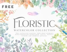 Floristic Watercolor Collection – Pixelify