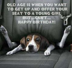 42 Happy Funny Birthday Images Funny Birthday Pictures 7