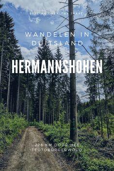 Wandelen in Duitsland! Net over de grens is de wandelroute Hermannshöhen en deze biedt je alle uitdagingen van een hike alsof je ver in het buitenland bent! Cities In Germany, Germany Travel, Wonderful Places, Beautiful Places, Best Hikes, Europe Travel Tips, Ultimate Travel, Outdoor Travel, Where To Go