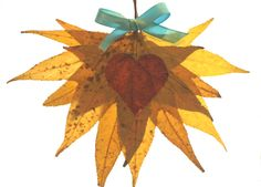 freshly found: Heart Leaf Heart