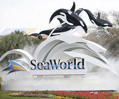 Animal Feedings at Sea World Orlando