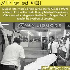 Murder rates in Miami, FL during the 1980s - WTF fun facts