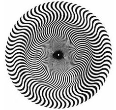 Bridget Riley's Motion Illusions