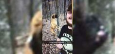 Helpless Dog Hung to Death for Kicks by Youths in West Virginia - In Defense of Animals