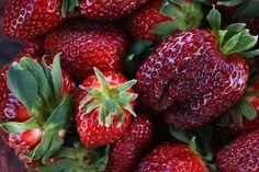 strawberries, Gemlik, Turkey