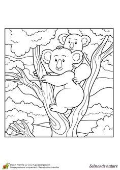 Dessin à colorier d'une maman koala et de son enfant sur le dos
