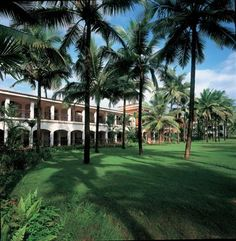 Top 25 Hotels In India Tripadvisor Travelers Choice Awards See The Best World As Determined From Ratings By Like You
