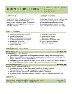 buy professional resume templates professional resume template - Buy Resume Template