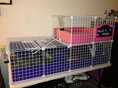 2 x 4 Cage w/ 2 x 2 Loft, covered - Guinea Pig Cage Photos