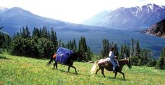 Horse riding vacations in British Columbia