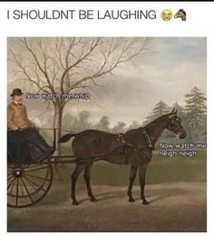 27 art history photos that are too funny for their own good 27 K . - 27 art history photos that are too funny for their own good 27 art history photos that are - Funny Shit, Really Funny Memes, Stupid Funny Memes, Funny Animal Memes, Funny Puns, Funny Relatable Memes, Haha Funny, Funny Animals, Funny Stuff
