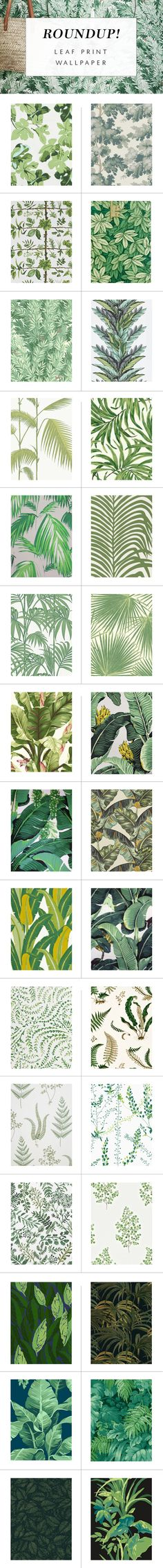 Roundup Our Favorite Leaf Print Wallpapers