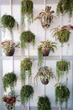 Green balcony wall