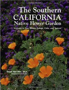 Southern California Native Flower Garden: A Guide to Size, Bloom, Foliage, Color, and Texture California Native Plants, California Garden, Southern California, Water Wise, Garden Guide, Garden Landscape Design, Garden Stones, Back Gardens, Front Yard Landscaping