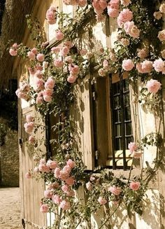 "Climbing roses around doors and windows. Gives such a ""little rose cottage"" feel. Beautiful Gardens, Beautiful Flowers, Pretty Roses, Simply Beautiful, Gorgeous Gorgeous, Beautiful Life, Absolutely Gorgeous, Colorful Roses, Pink Flowers"
