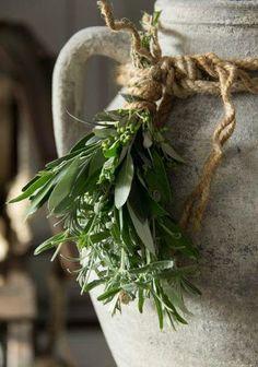 *❄️~*. December .*~❄️* Mint & Rosemary Herbs Tied w/ Twine