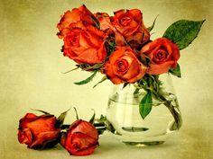 Vermelho, flores, buquet, rosas, vaso, água Papéis de Parede - 1920x1440