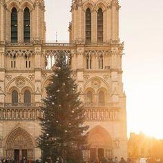 Notre Dame at sunrise in December