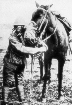 Dr Psychotic's Photo Gallery - World War I and World War II Related Images Photo 8 Gas masks for man and horse