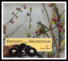 Share Your Sightings Journey North 2015