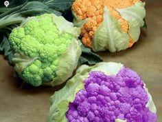NO DIG VEGETABLE GARDEN WEBSITE vegetables to grow coloured cauliflowers
