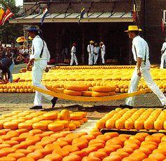 Cheese market Alkmaar - Kaasmarkt Alkmaar