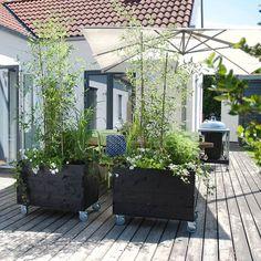 """Anna Karlberg på Instagram: """"Ps. Missa inte mitt senaste inlägg på bloggen där jag tipsar om snygga, snabba insynsskydd! 👉 www.arkitektenstradgard.se…"""" Red Roof House, House With Balcony, Garden Cottage, Garden Beds, Home And Garden, Balcony Plants, Backyard, Patio, Outdoor Living"""