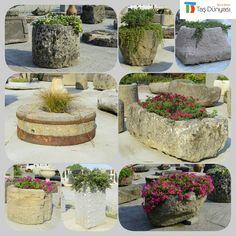 Farklı yerlerden çeşit katarak derlediğimiz bahar konseptli taş peyzajlarimiz mest olduğumuz bu güzellikler TAŞDUNYASI'nda ↔️bekleriz🌹🍀🌺🍃🌼 #bizeulasin  📞02123601115  📬info@tasdunyasi.com.tr  🖱www.tasdunyasi.com.tr #tasdunyasistonworld #stone #stones #naturalstone #peyzaj #peyzajmimarligi #landscape #landscapes #landscapelovers #landscape_lovers #landscape_captures #kemercountry #kemercountrygolfclub #tbt #instagram #instagram_turkey #instagood #instadaily #instalike #instamood #bahçe