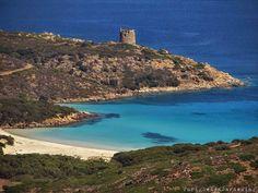 Furighedda gardening: Insula Sinuaria– Asinara