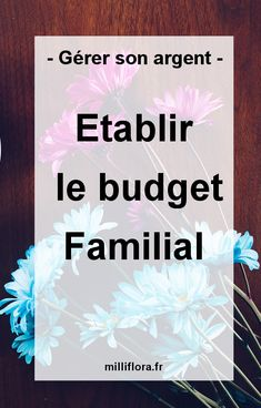 personal finance tips saving money Mon Budget, Faire Son Budget, Best Budget, Budgeting Process, Budgeting Finances, Company Goals, Budget Envelopes, Communication Networks, Family Budget