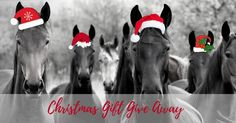 We are rewarding twelve lucky members of our Forageplus Whole Horse Health email community with some fabulous prizes.     If you are not already part of our email community then enter before the deadline to win a chance of receiving a gift give away from us.