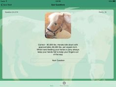 Learn all bout horses with this genuine app designed by a team that has over 75 years of combined experience in breeding and training horses! Educational Apps For Kids, Horse Information, Interesting Information, App Design, A Team, Pony, Training, Science, Range