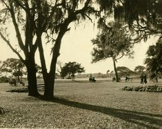 Golf Course. Ponce de Leon Golf Club. 1950.  Photo courtesy of Jeannie Boatner.