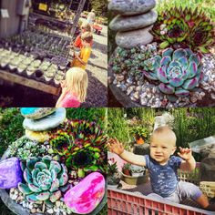 Succulents and kids: an easy planting activity for any age How To Make Breakfast, Planting, Succulents, Age, Activities, Landscape, Garden, Outdoor Decor, Kids