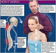 Posture | Alexander Technique, A Few Facts