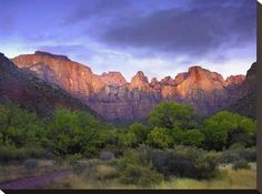 Stretched Canvas Print: Towers of the Virgin, Zion National Park, Utah by Tim Fitzharris : 18x24in