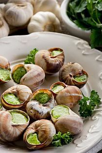 Escargot, beautiful presentation. European Food Guide  #EuropeanFood