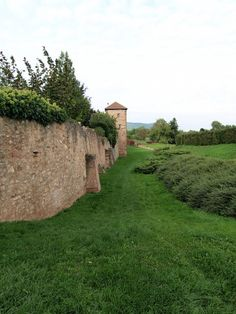 Bergheim :remparts