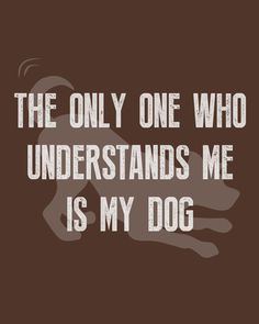 They just get me #WeeklyPLAYQuote   #dogquotes #dogmoments #dogsarethebest #dogloversfeed #dogslife #dailydogs #wedontdeservedogs #dogsarebetterthanhumans #dogsareloves #dogsarethebest #dogsmakeeverythingbetter #dogmeme #introvert #caninetrovert #dogsayings #dogjokes #dogmomaf #mood Cute Cat Quotes, Dog Quotes Funny, Funny Dogs, Play Quotes, Dog Jokes, Animal Quotes, Introvert, Dog Mom, Mood