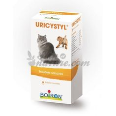 homeopathie anti puce pour chat