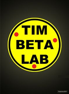 Tim Beta Lab 2017