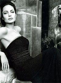 St John knits 2009   Angelina Jolie for St. John - Celebrity Endorsements, Celebrity ...